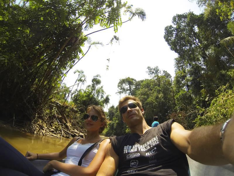 wildlife-honeymoon