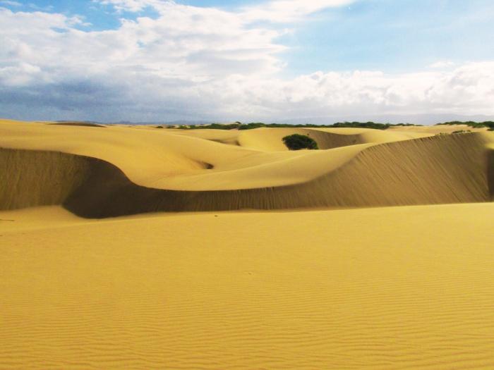 Medanos de Coro desert