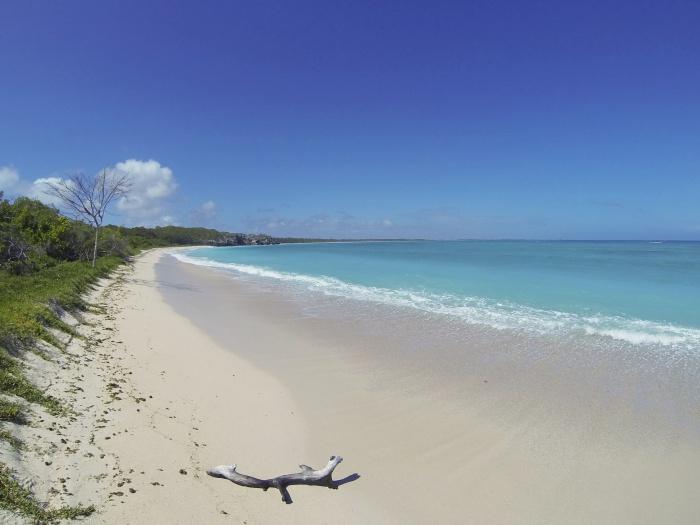 Venezuela Caribbean beach