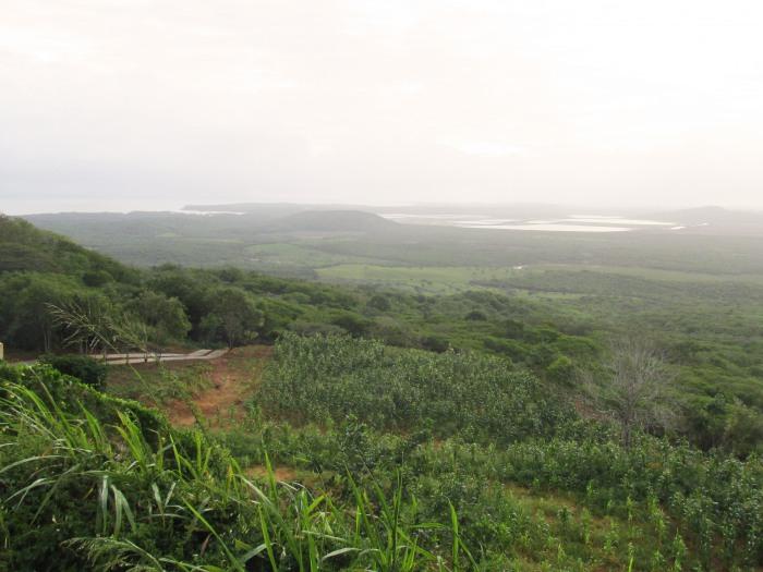 Venezuela countryside
