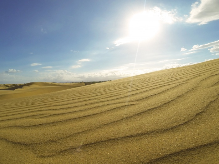 Venezuela desert