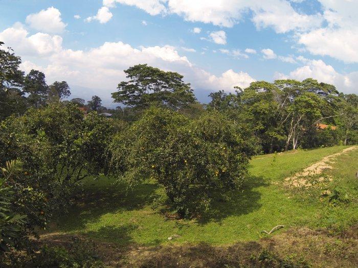 Venezuela landscape
