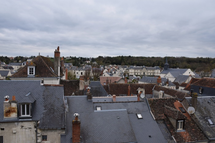Loches view