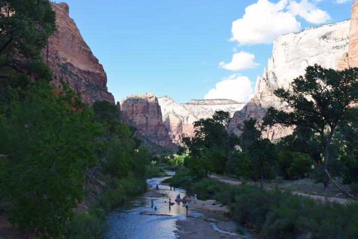 River stream Zion National Park
