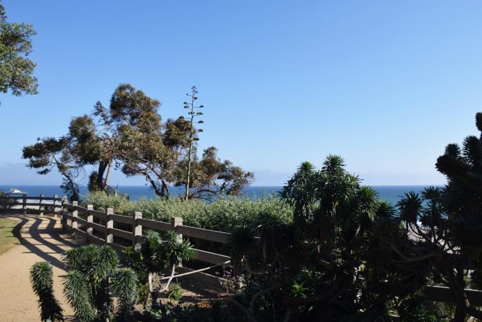 Santa Monica coastline