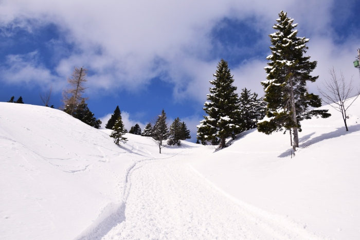 Slovenia winter hike Velika Planina