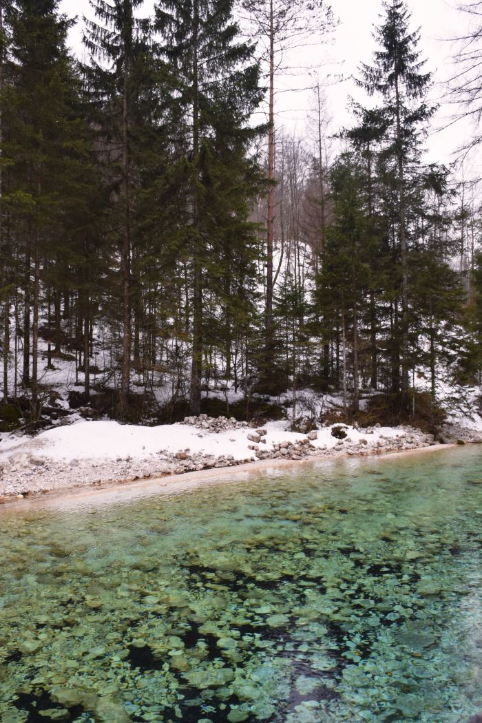 Triglavska Bistrica river Triglav national park in winter Slovenia