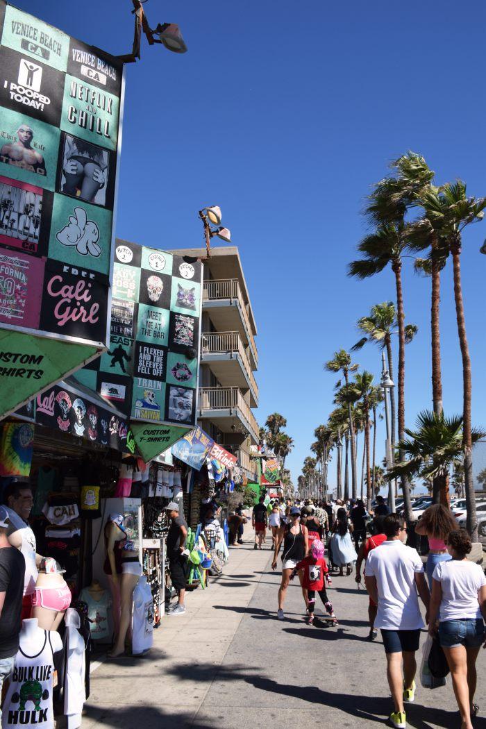 Venice vibe Los Angeles USA