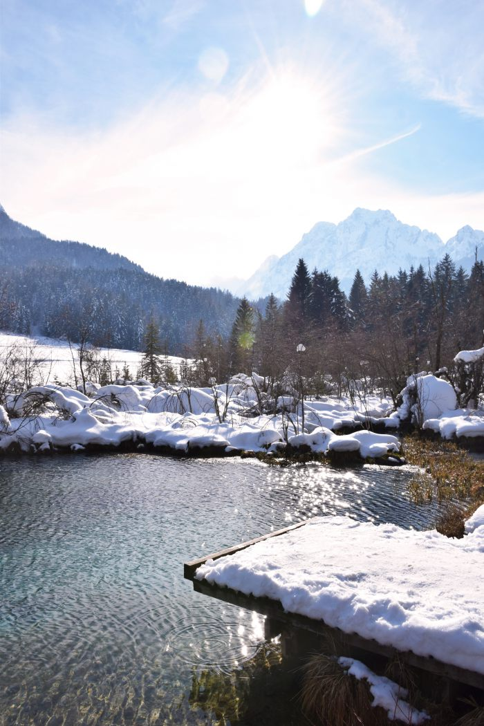 Zelenci lake winter fairytale Slovenia