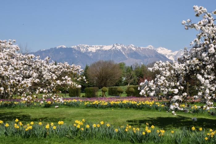 Slovenia top attractions Volcji Potok Arboretum